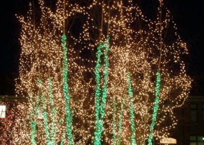 Christmas Lights 5